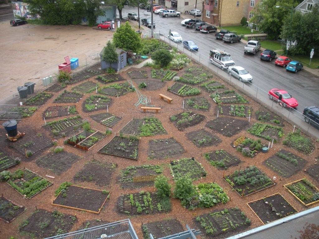 remy_garden